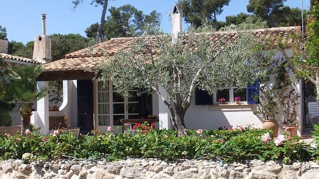 domeček, olivovník, zahrádka
